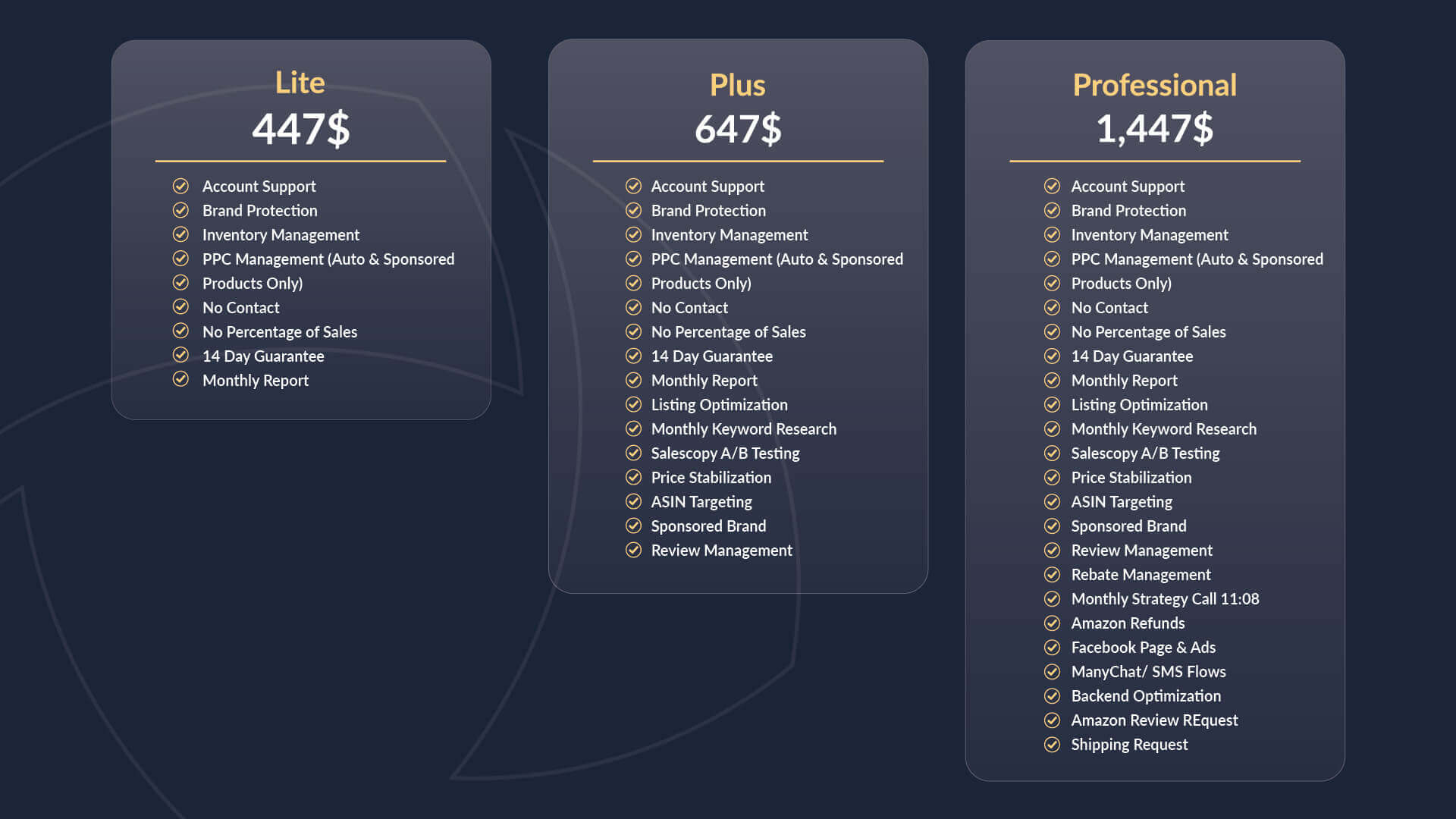 Comparison of all services offered within the Lite, Plus, and Professional Agency packages.