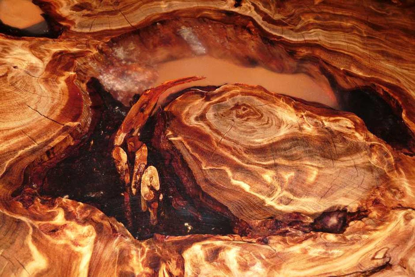 Holztische aus kunstvollem Kauri Holz, einzigartige Natur Kunstwerke mit Leidenschaft und Ehrfurcht angefertigt, besondere Unikat Tische aus wunderschönem Wurzel Stamm