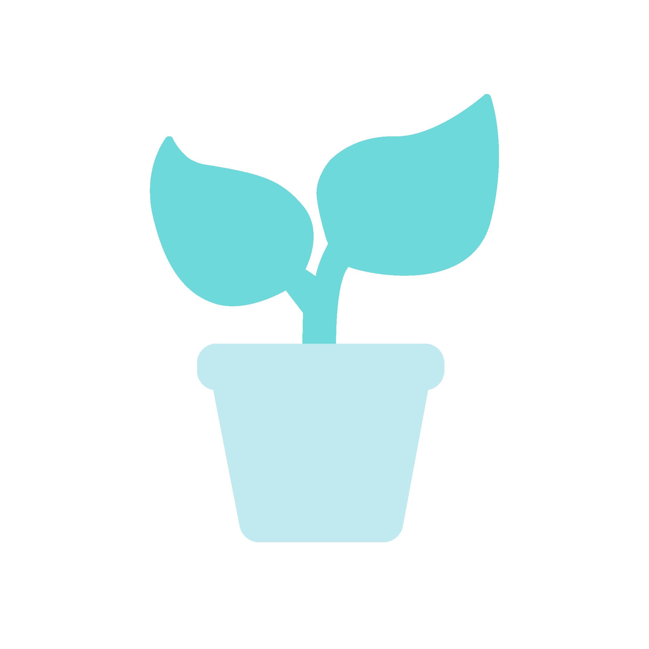 Plant, Startup Icon