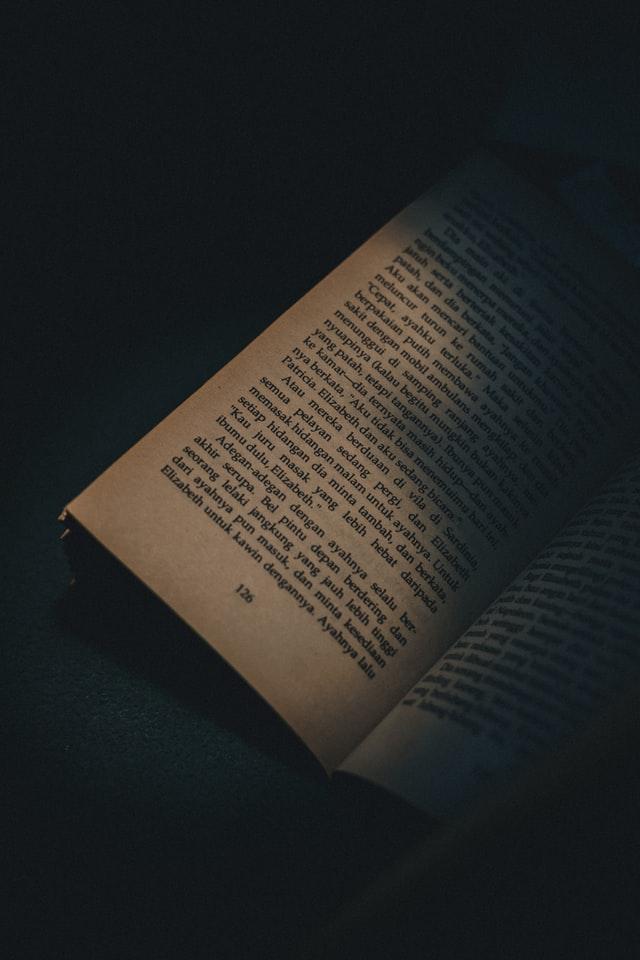 Lucid Fiction