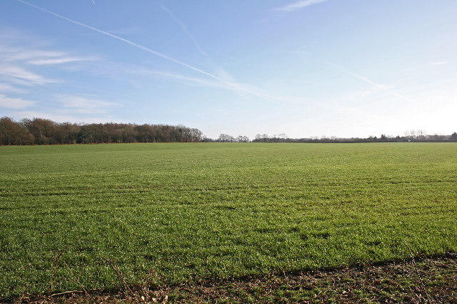 Farm land near Punsholt Farm - geograph.org.uk - 109052 - Flipping Houses 101