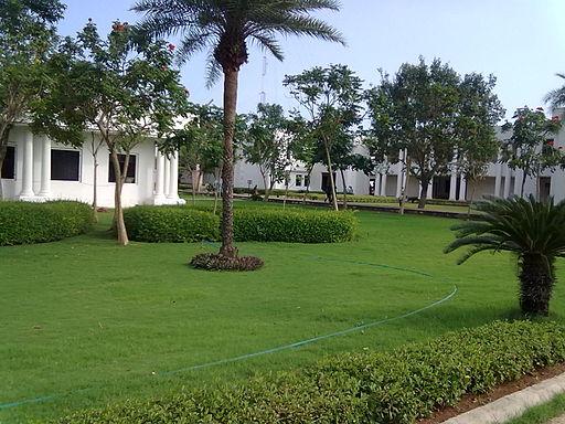 Lawn 13