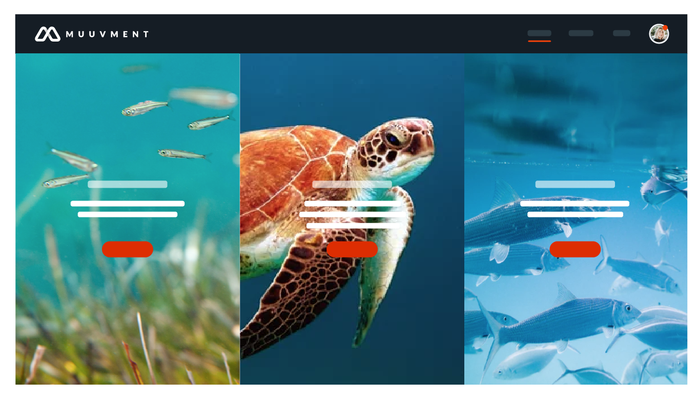 Purpose  product screencap showcasing interactive video