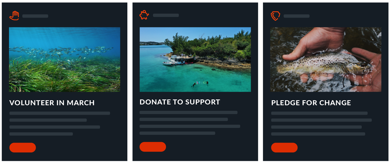 Purpose product screenshots showcasing different action cards including volunteering, pledges, and donation