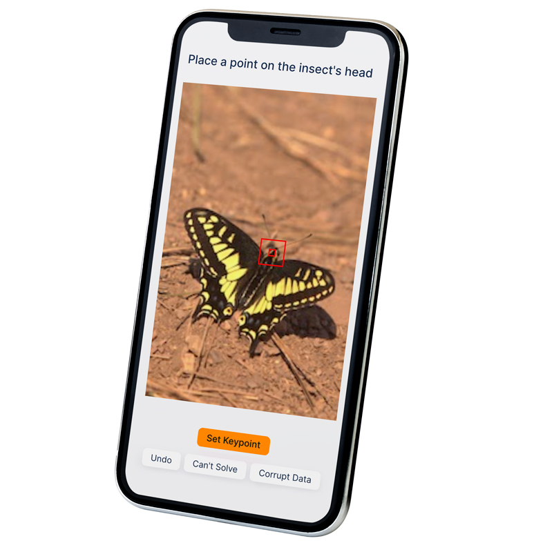 """nano-task example asking user to """"Place a point on the insect's head"""", shown on mobile device"""