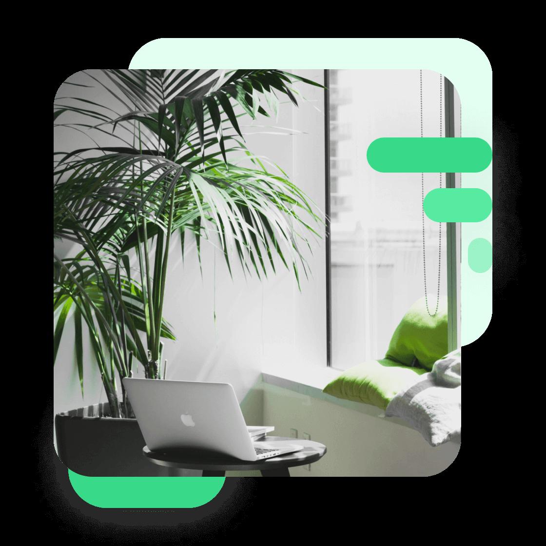 Slika pisarne z rastlinjem in računalnikom v ospredju, jpg slika