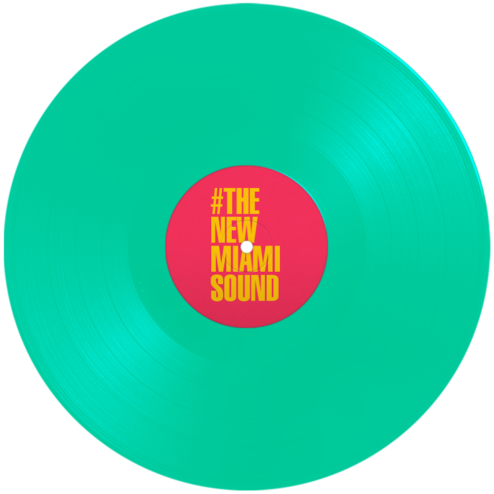 vinyl rotating disc