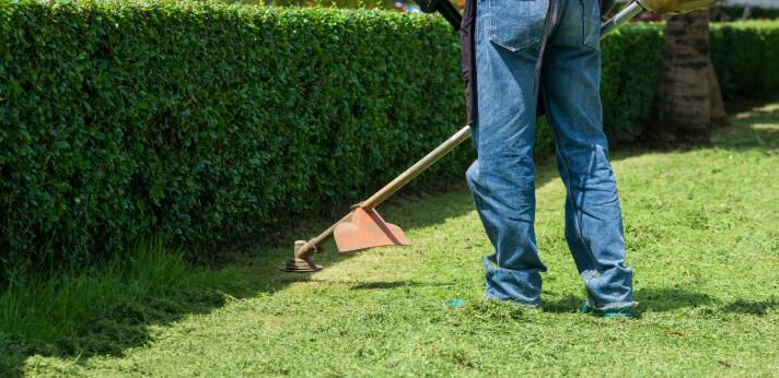 Man mows the grass