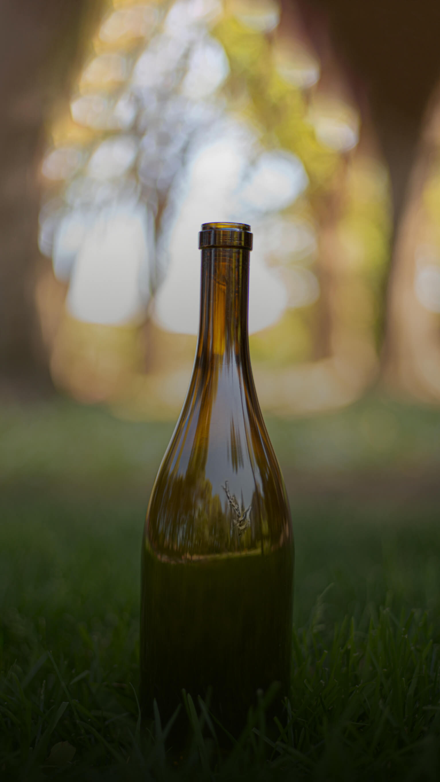 A verre vert bottle on the grass with a forest in the background.