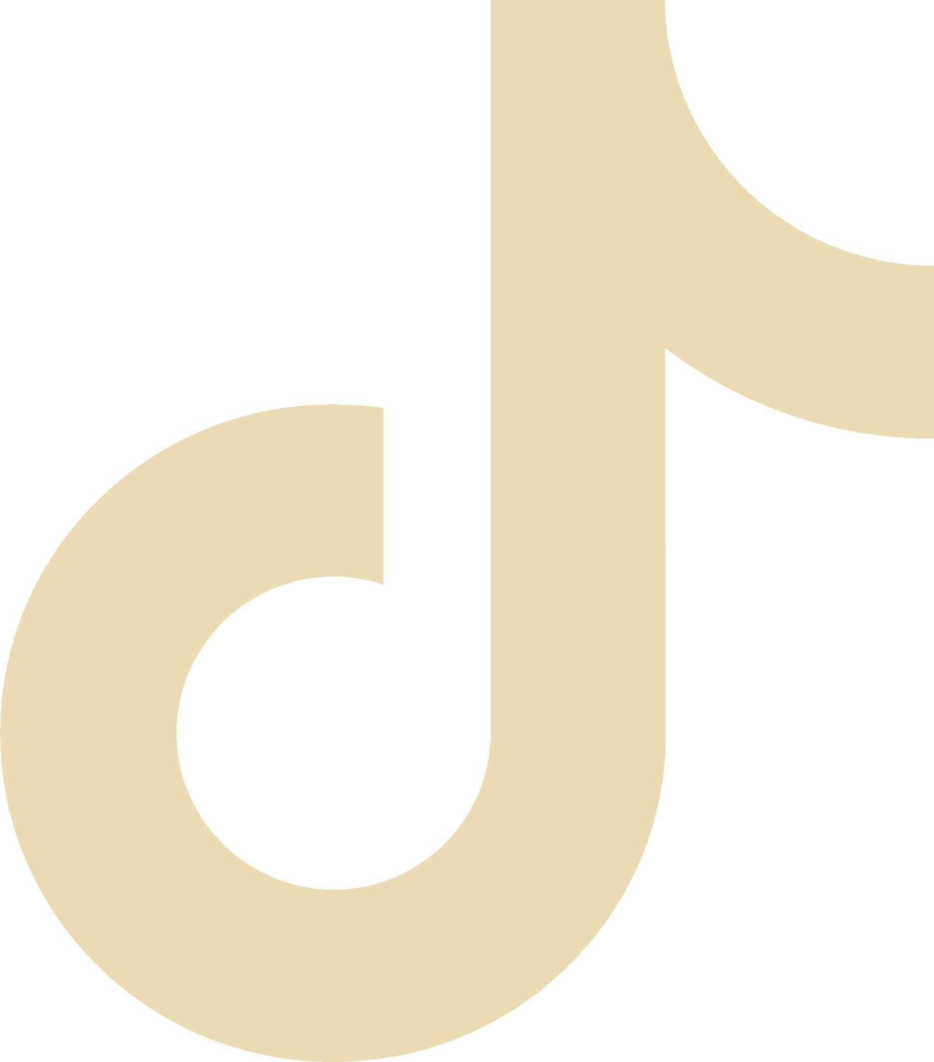 TikTok icon.