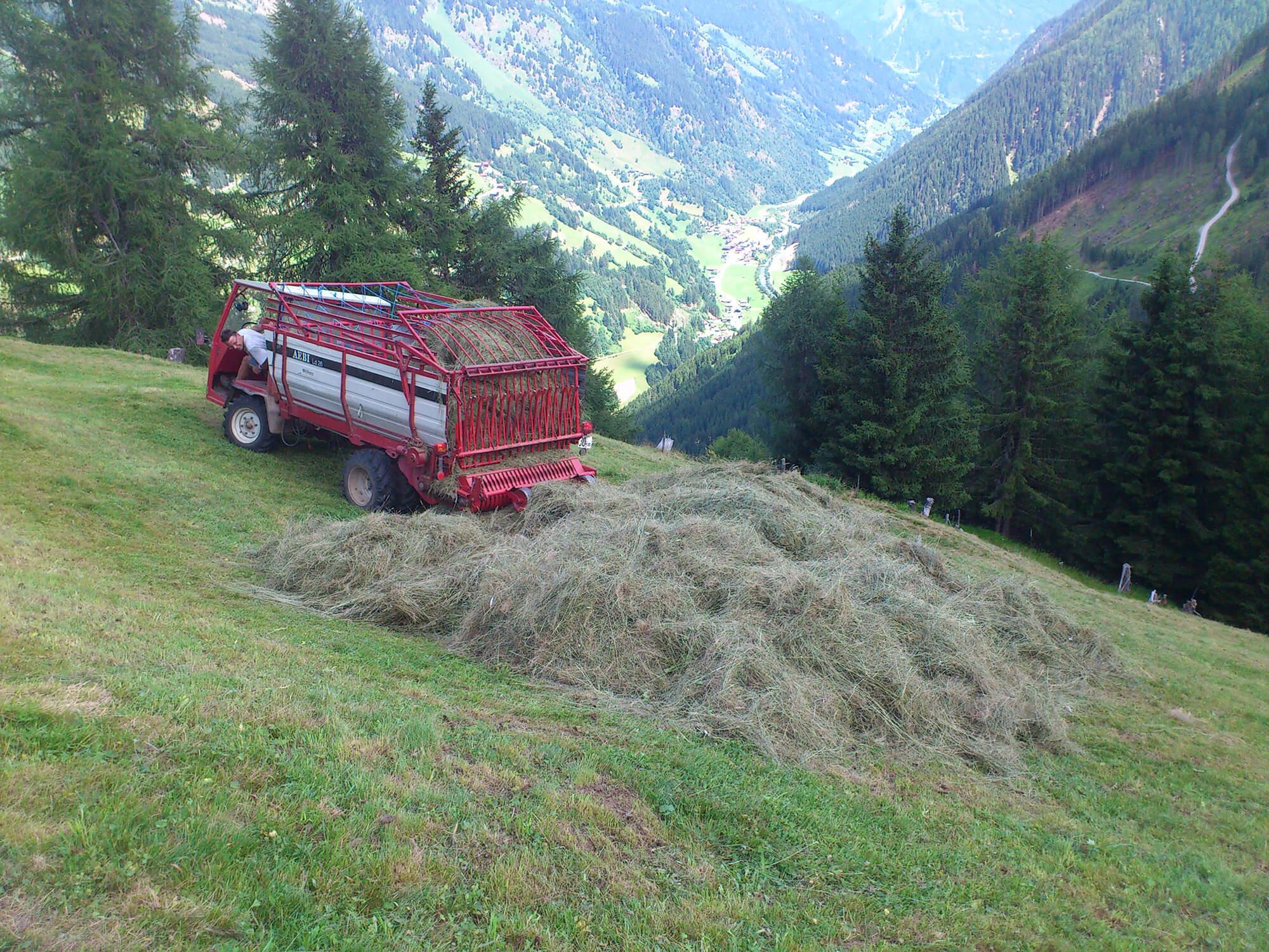 Transporter sammelt Heuhaufen bei der Feldarbeit ein.