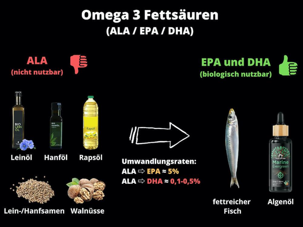 omega-3-ala-epa-dha