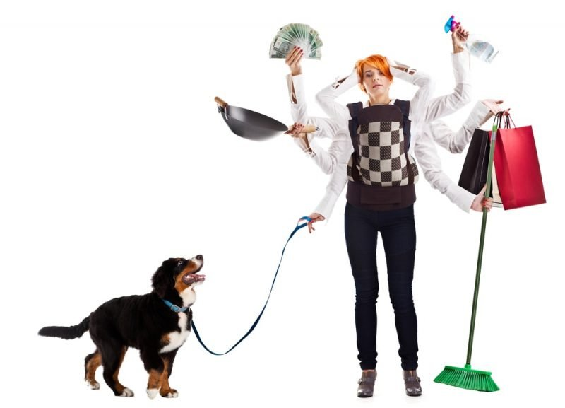 Maid Service can help clean the pet odors out