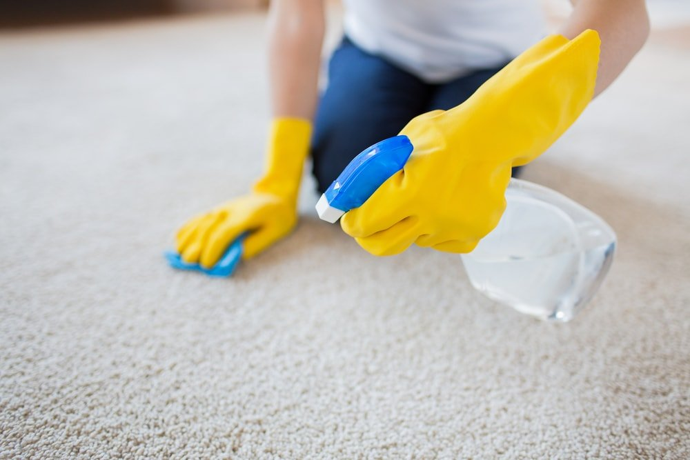 Carpet Cleaning Company Naperville