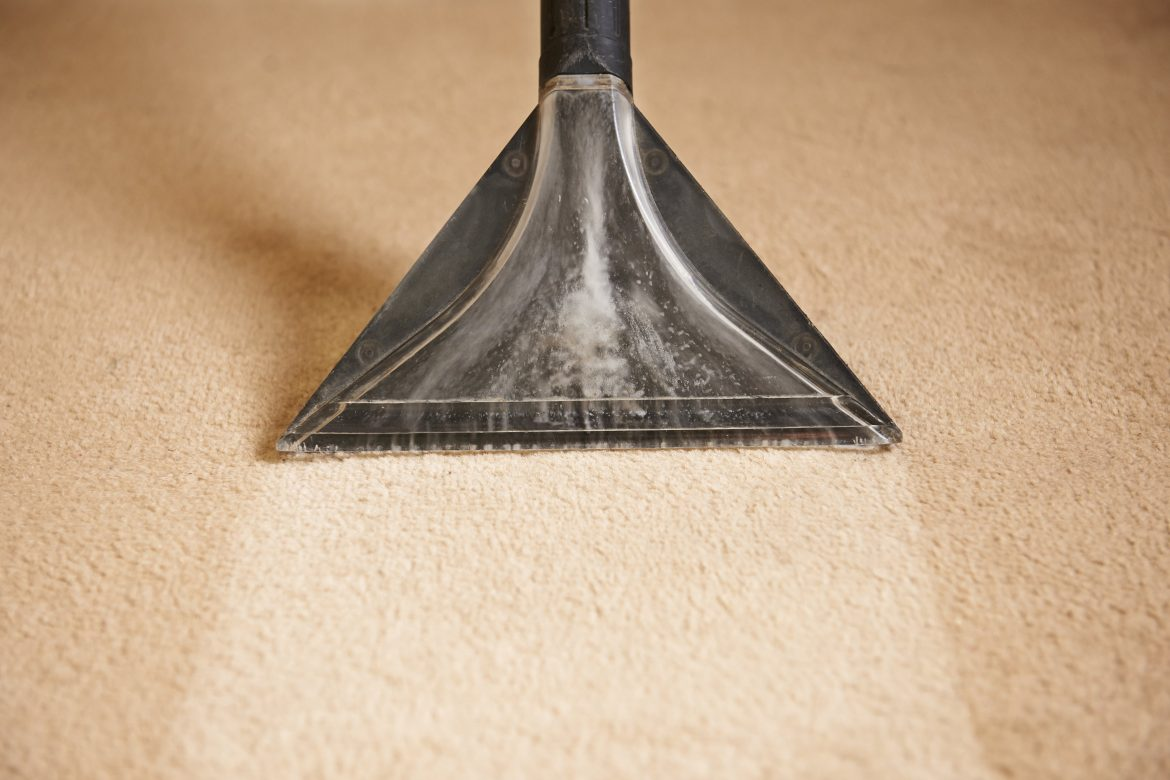 Carpet Cleaning Professional vs Doing Yourself. What Is Better?