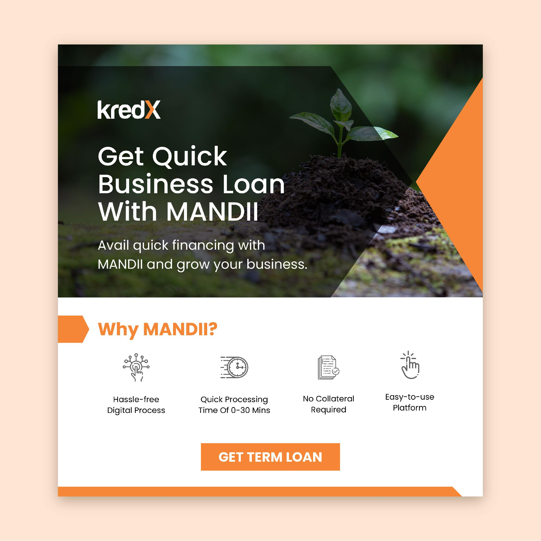 Get Quick Business Loan