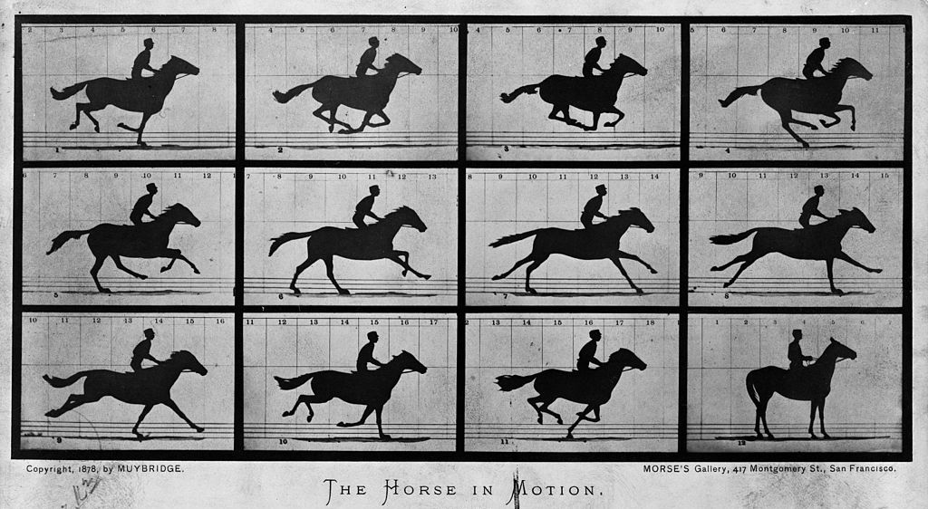 Visual storytelling in 1878 - The Horse in Motion