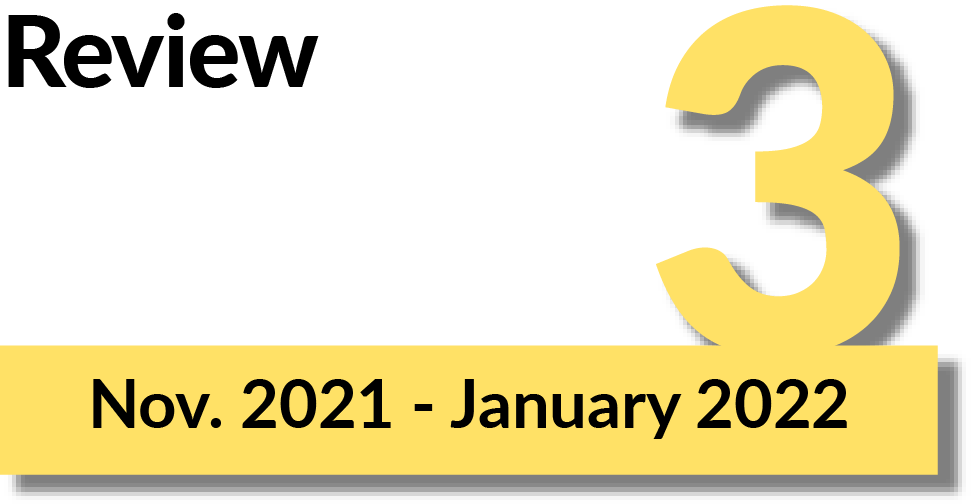 Phase 3: Review, November 2021 to January 2022