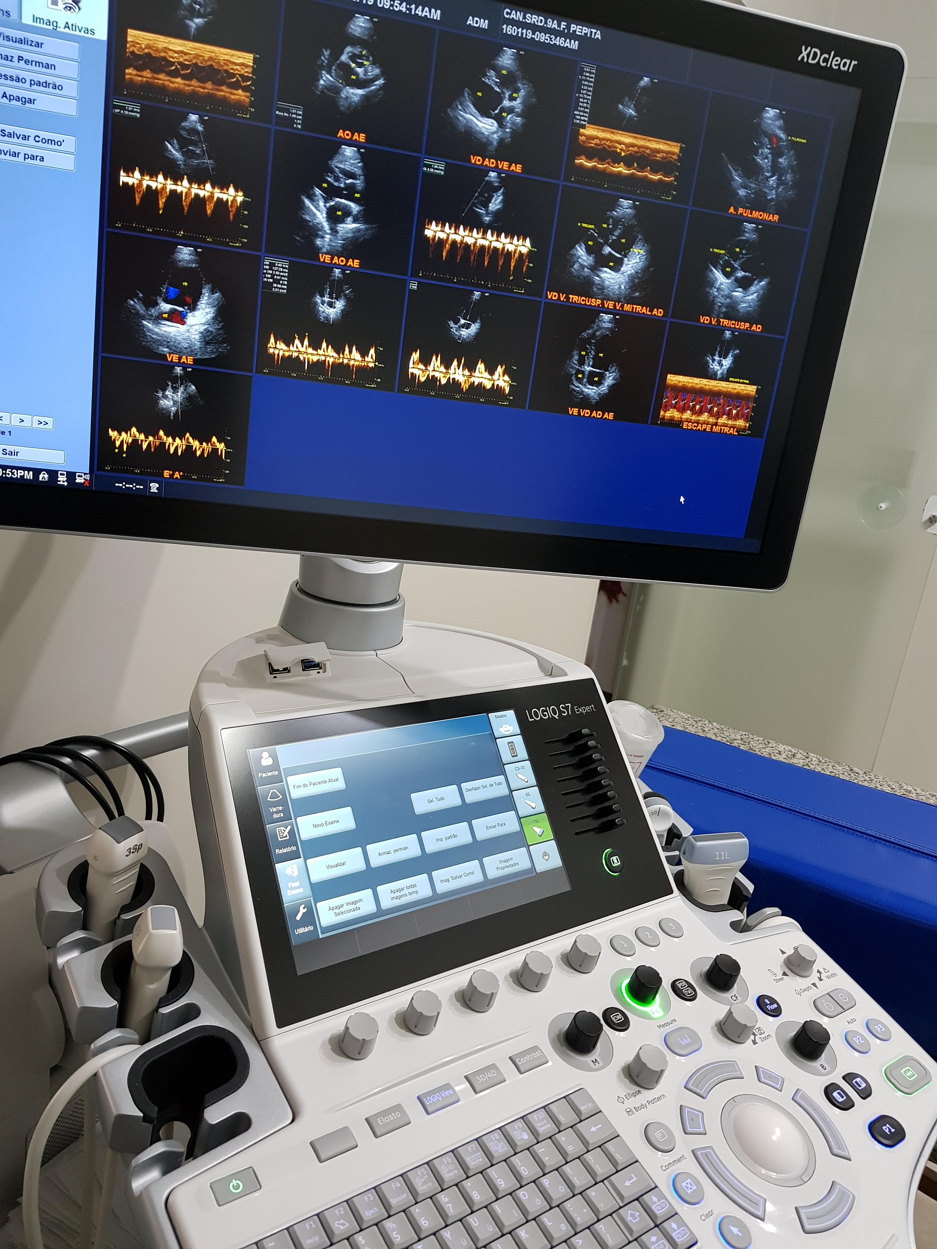 CDVETMaringa_Cardiologia_1