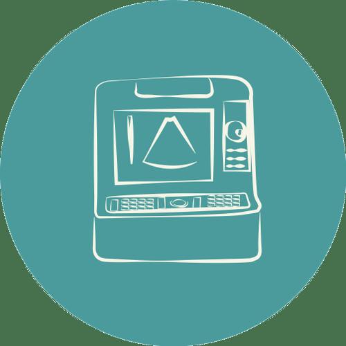 CDVETMaringa_Ultrassonografia