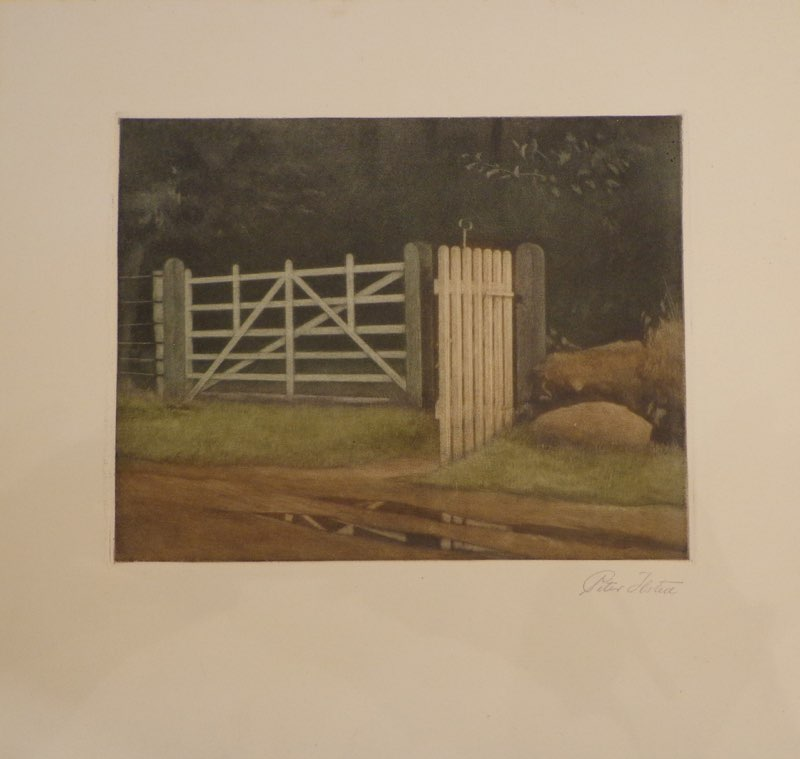 Ilsted, Gate in a Wood