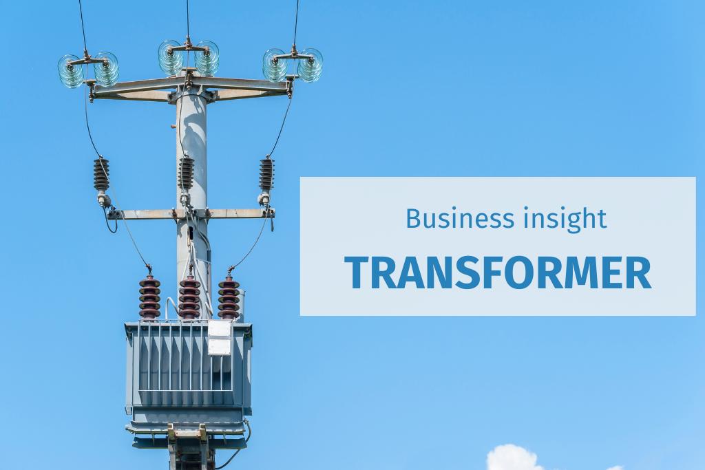 Transformer 2021 Business Insights