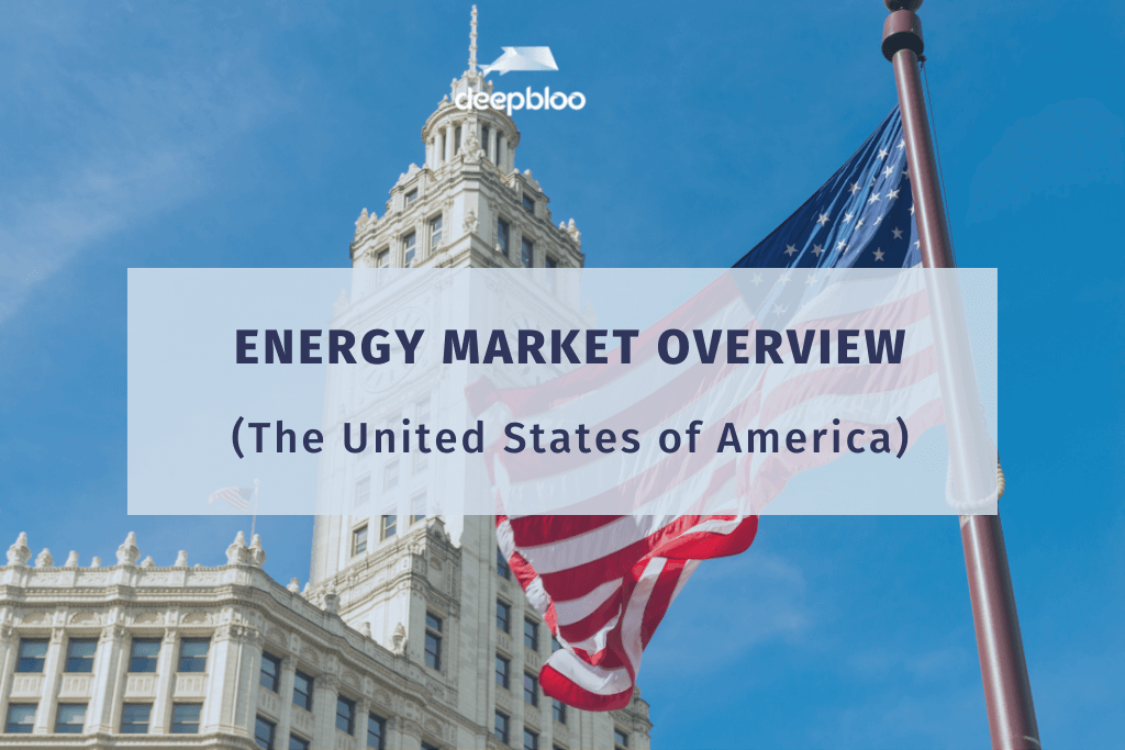 Energy Market Overview - The United States of America