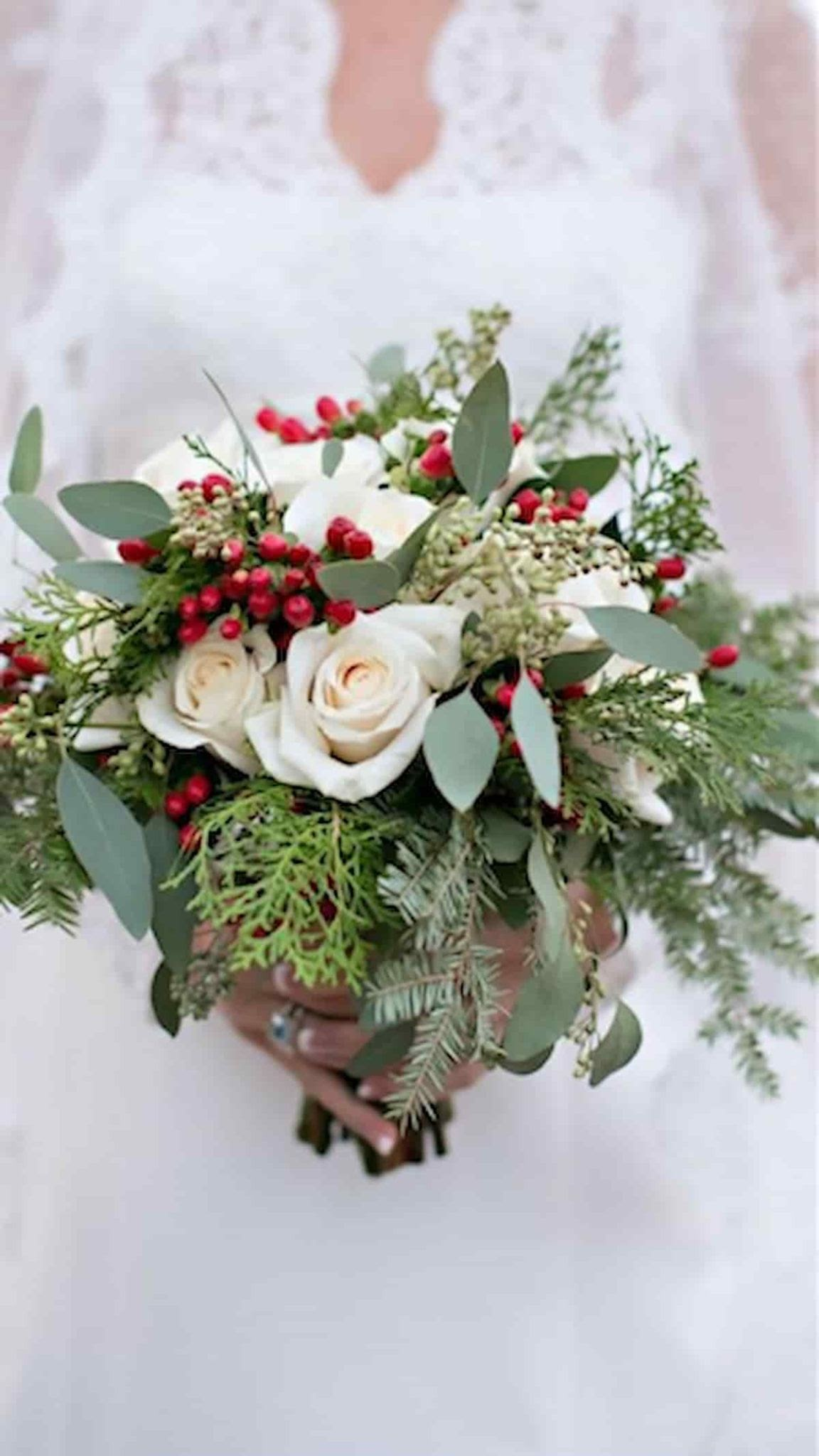 A Christmas bridal bouquet uses holly berries and silver leaves