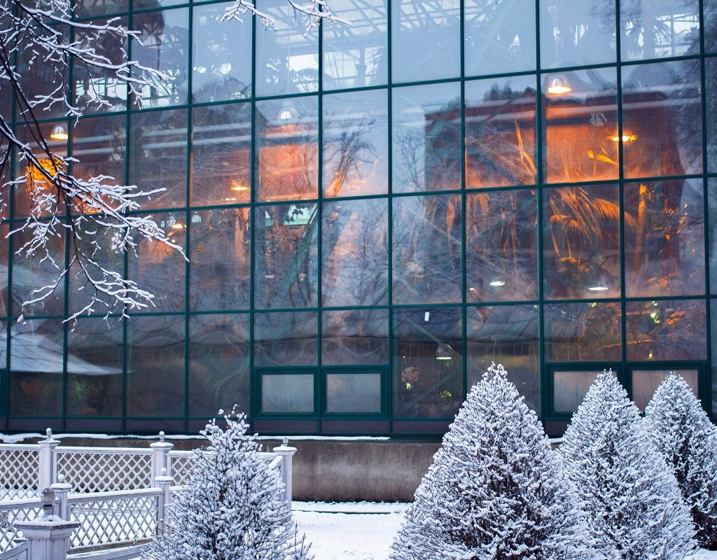 Winter is the Best Time to Hire a Landscape Maintenance Contractor