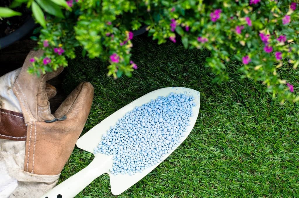 When to Fertilize Lawn In Wisconsin?