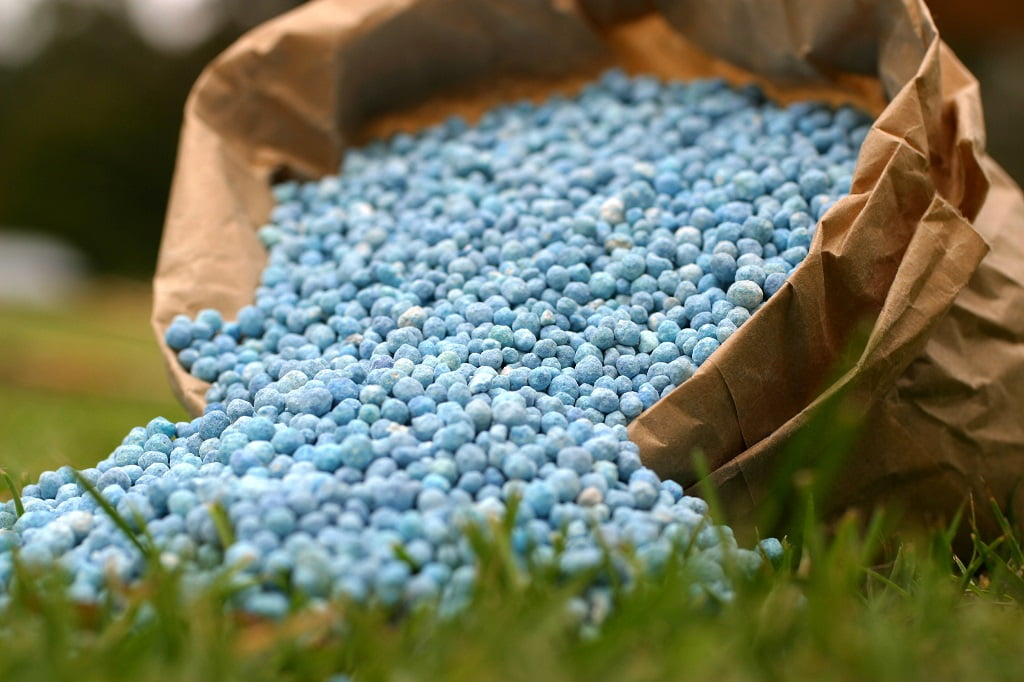 Blue fertilizer in brown paper bag