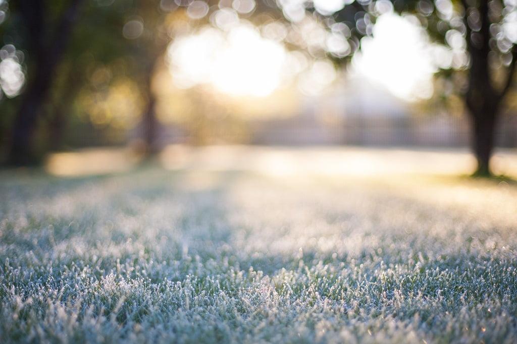 Landscape Design Winter