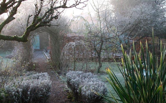 Landscape Design in Winter