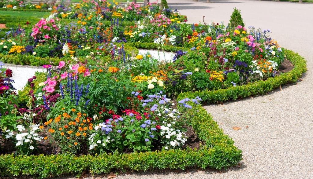 Flower Bed Creation for Commercial Property