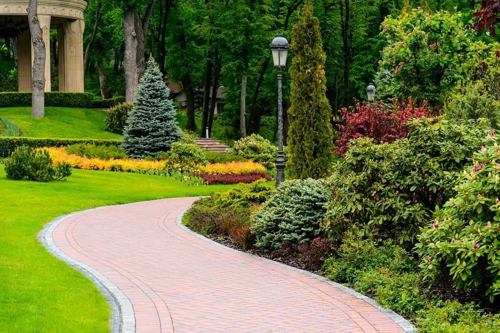 Road through amazingly planned garden