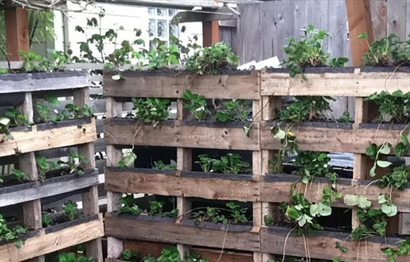 While You're at it, Make Your Pallets into Planters