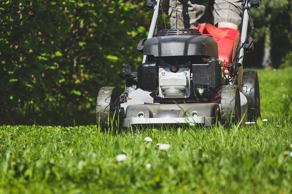 Timely Cropping Landscape Contractor