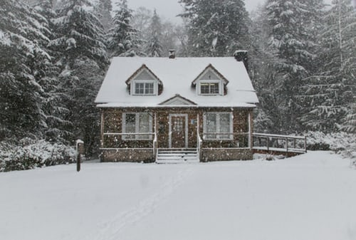 6 Winter Lawn Care Tips