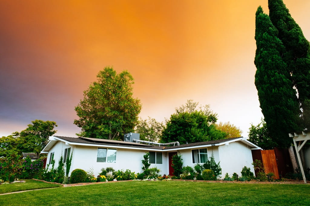 Top 10 Biggest Lawn Care Mistakes You're Probably Making