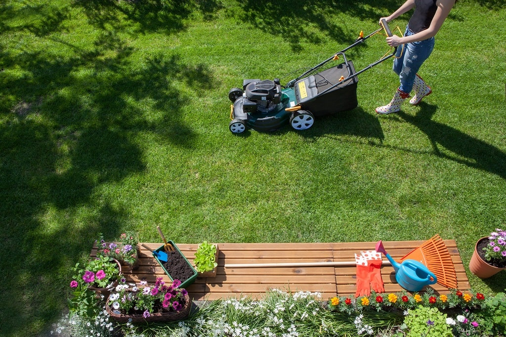 How to Prepare Your Yard for Spring