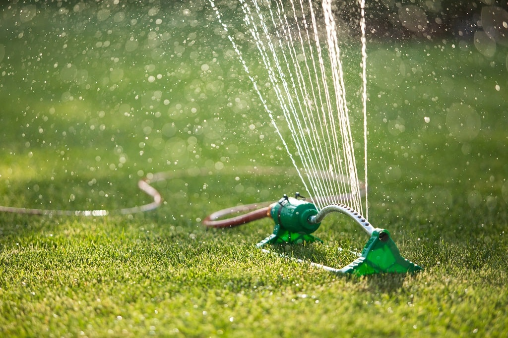 Lawn Watering for Green Grass