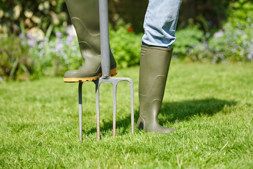 Should You Aerate Your Lawn In The Summer In Ohio?