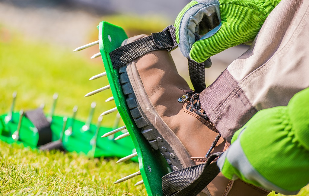 Is Lawn Aeration Necessary