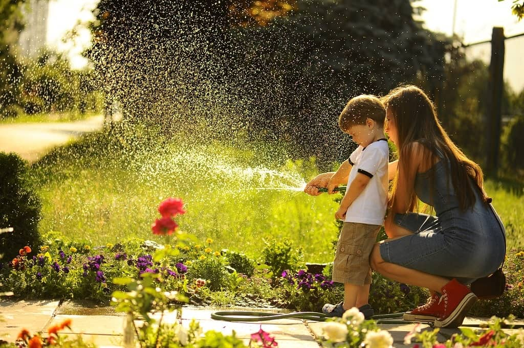 Lawn Watering Guide: Tips and Tricks