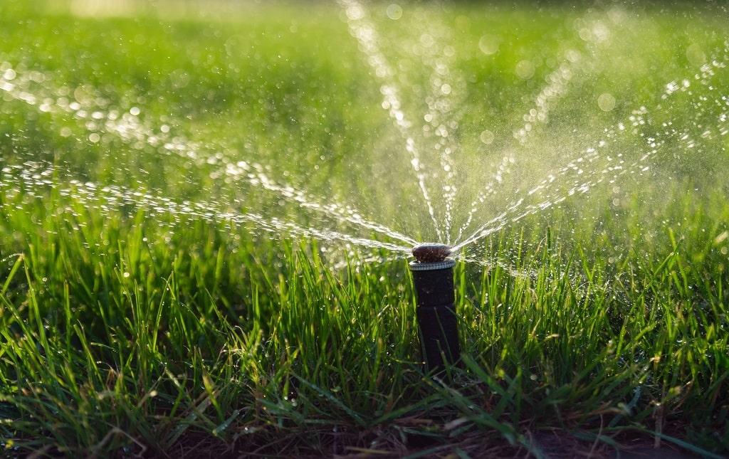 Lawn Watering Schedule