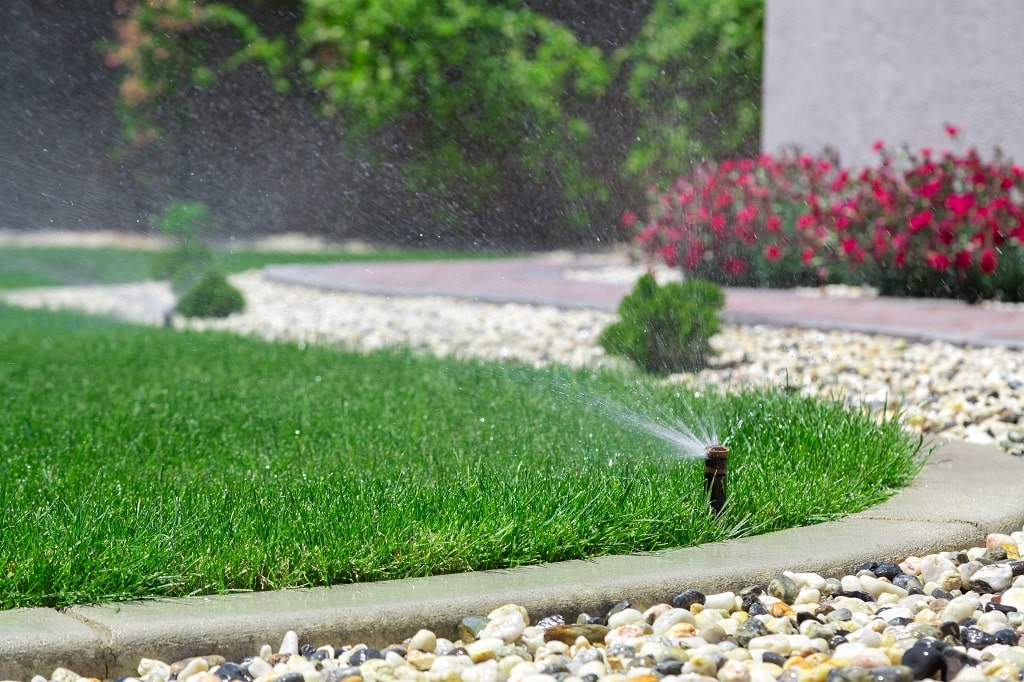 How Long to Water a Lawn
