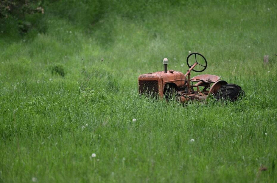 Lawn Mowing for a Healthy Lawn
