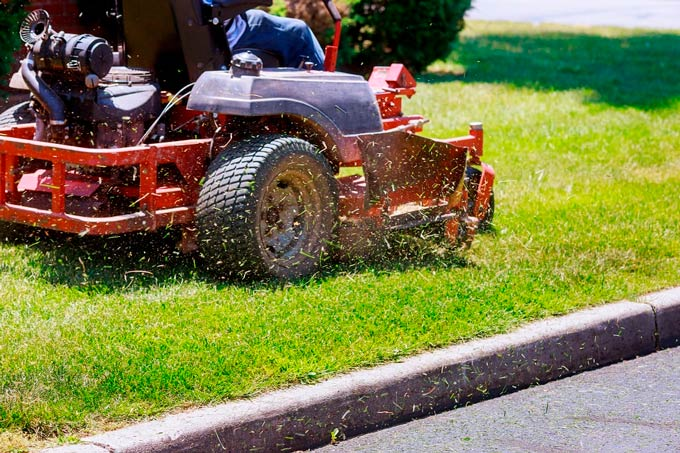 What is Lawn Maintenance