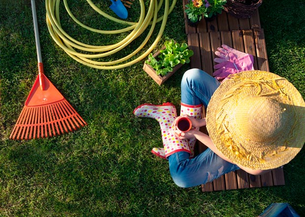 Improving Your Landscape This Spring - Top 4 Ideas