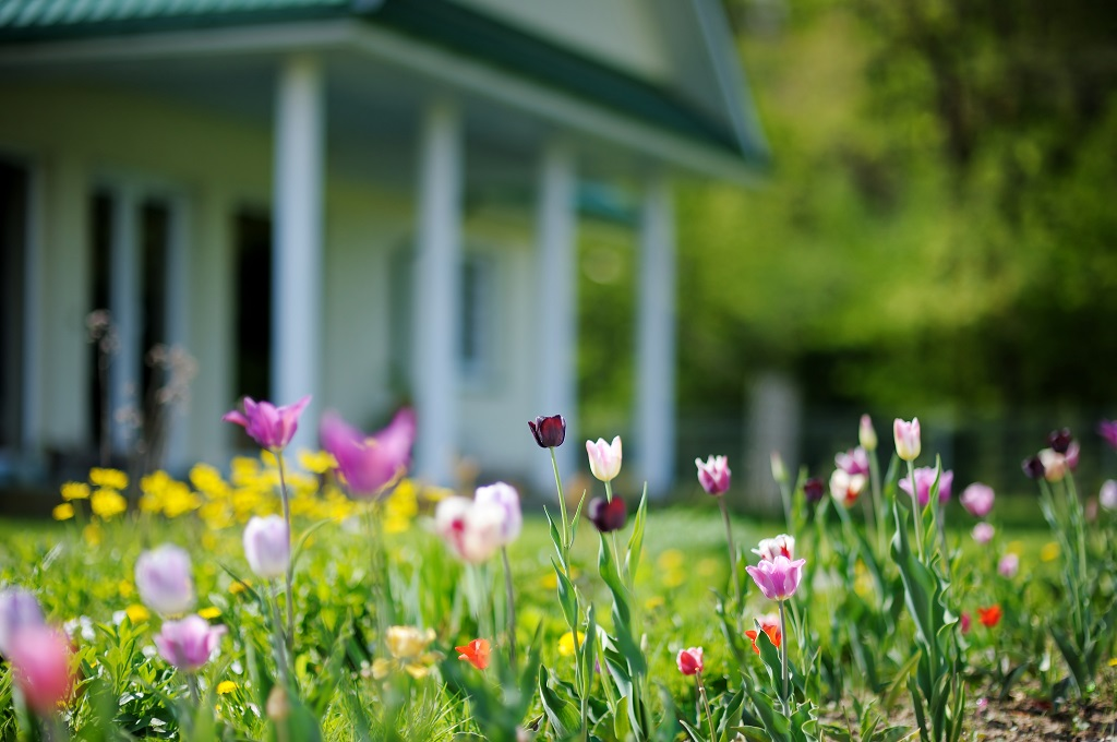Improving Your Landscape This Spring Inspiration Ideas